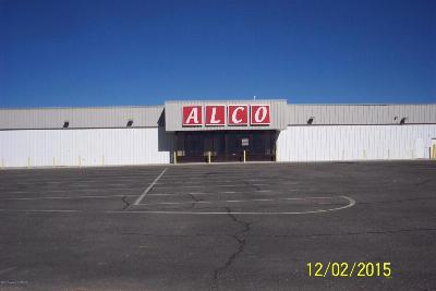 Kirtland Commercial For Sale: 4172 Us 64