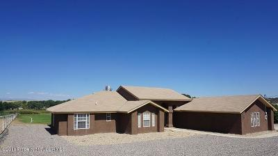 Aztec Single Family Home For Sale: 18 Road 3179