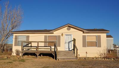Kirtland Manufactured Home For Sale: 50 Road 6219