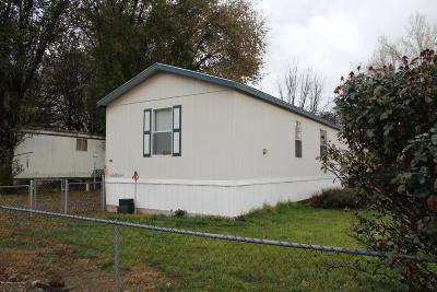 Manufactured Home For Sale: 415 Paralee Drive