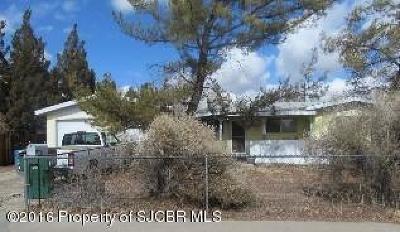 Farmington Single Family Home For Sale: 206 E Nambe Street