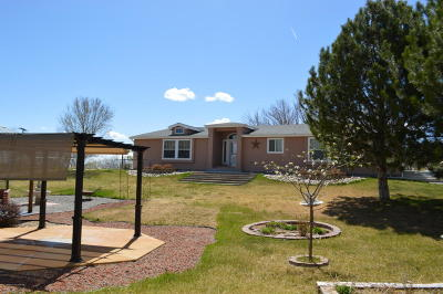 Manufactured Home SOLD : 974 E Nm 516