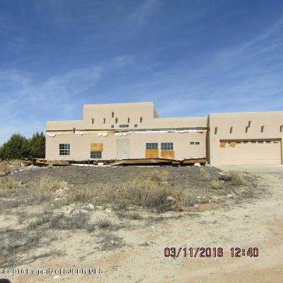 Aztec, Flora Vista Single Family Home For Sale: 3000 Mesa Escondido
