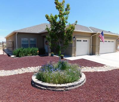 Farmington Single Family Home For Sale: 30 Road 3791