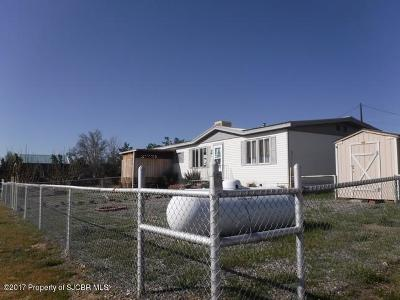 Aztec, Flora Vista Manufactured Home For Sale: 1 Road 3560