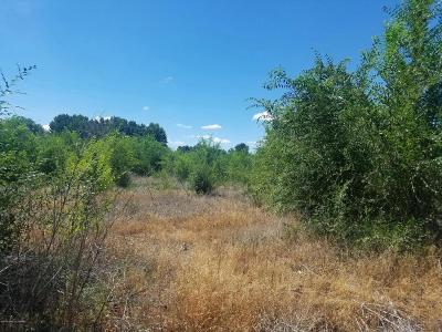 Residential Lots & Land For Sale: Xx Road 6675 Tract E
