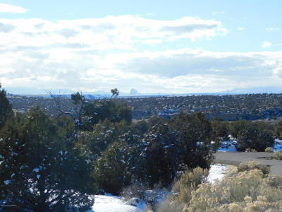 Farmington Residential Lots & Land For Sale: 1811 Placitas Trail