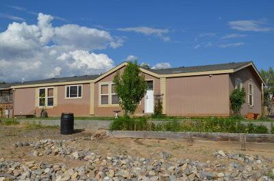 Farmington Manufactured Home For Sale: 31 Road 3940