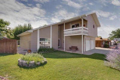 Single Family Home For Sale: 3112 N Mountain View Drive