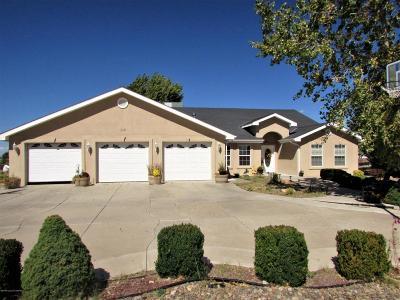 Farmington Single Family Home For Sale: 58 Road 3900