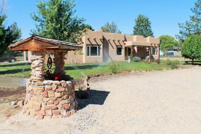 Farmington Single Family Home For Sale: 27 Road 5821
