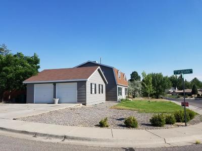 Farmington, Flora Vista Single Family Home For Sale: 2404 Municipal Drive