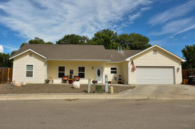 Aztec, Flora Vista Single Family Home For Sale: 121 Creekside Village