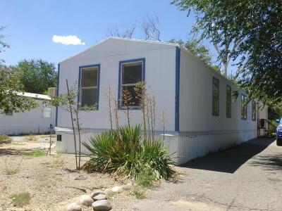Farmington Manufactured Home For Sale: 3719 Gold Avenue