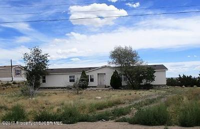 Aztec, Flora Vista Manufactured Home For Sale: 26 Road 3321