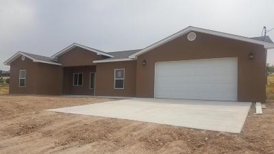 Farmington Single Family Home For Sale: 23 Road 3778
