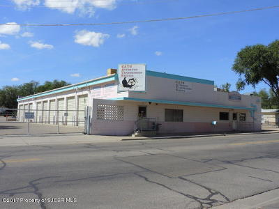 San Juan County Commercial For Sale: 1317 Schofield Lane