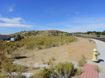 San Juan County Commercial For Sale: Nya Pinon Hills Boulevard