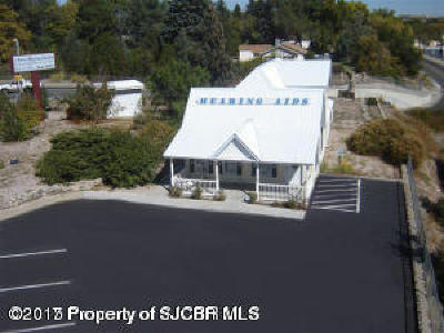 San Juan County Commercial For Sale: 312 N Butler Avenue