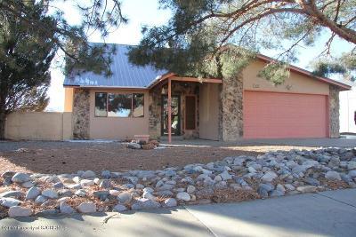 Farmington Single Family Home For Sale: 205 La Grange Avenue