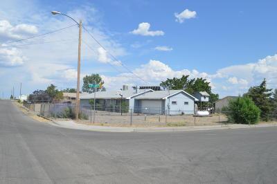 Farmington Single Family Home For Sale: 5231 W Comanche Street