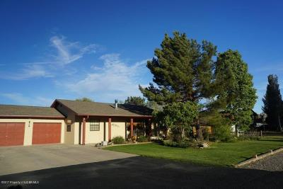 Bloomfield Single Family Home For Sale: 32 Road 5151