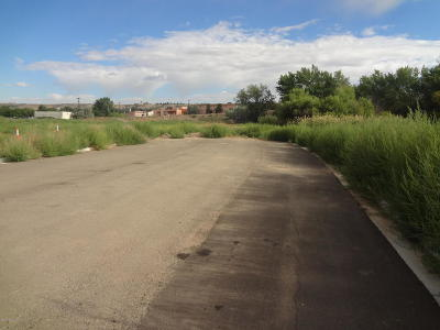 San Juan County Commercial For Sale: Nya Nelson Avenue