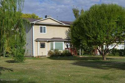 Fruitland, Kirtland Single Family Home For Sale: 20 Road 6686