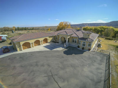 Farmington NM Single Family Home For Sale: $1,499,500