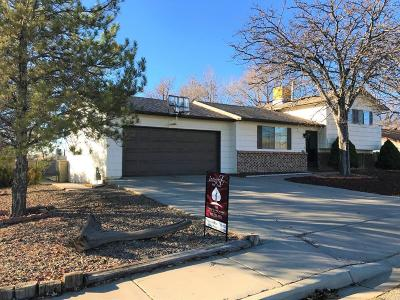 Farmington Single Family Home For Sale: 3501 N Buena Vista Avenue