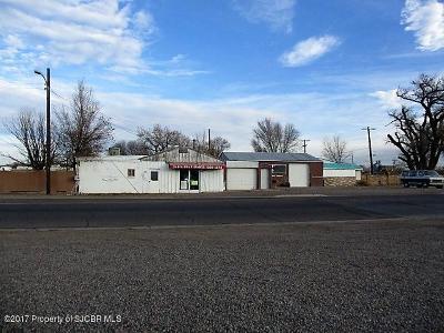 Farmington Commercial For Sale: 202 & 210 E Pinon Street