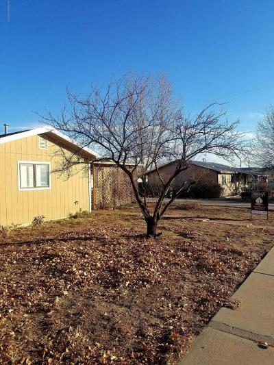 Aztec, Flora Vista Single Family Home For Sale: 404 Newman Avenue