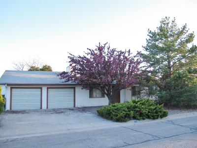 Aztec, Flora Vista Single Family Home For Sale: 328 Arnold Drive