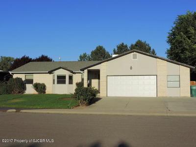 Farmington Single Family Home For Sale: 13 Road 6067