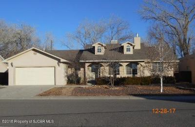 Bloomfield Single Family Home For Sale: 1018 Valley View Drive