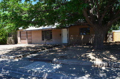 San Juan County Single Family Home For Sale: 2306 N Mesa Verde Avenue