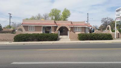 San Juan County Commercial For Sale: 315 N Auburn Avenue