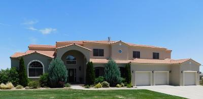 Single Family Home For Sale: 4240 Vista Pinon Drive