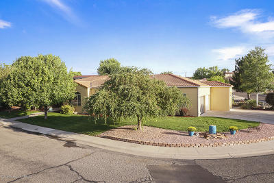 San Juan County Single Family Home For Sale: 2330 Suntuoso Court