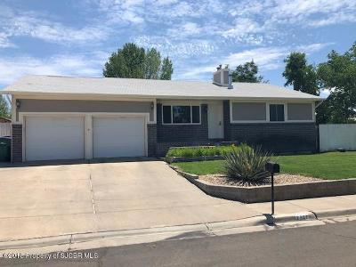 Single Family Home For Sale: 2702 Zia Court