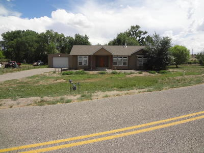 Aztec Single Family Home For Sale: 41a Road 3004
