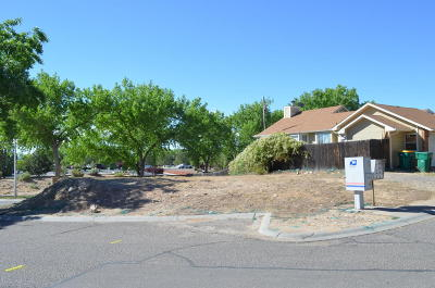 Farmington Residential Lots & Land For Sale: L1 B3 Ranch Drive