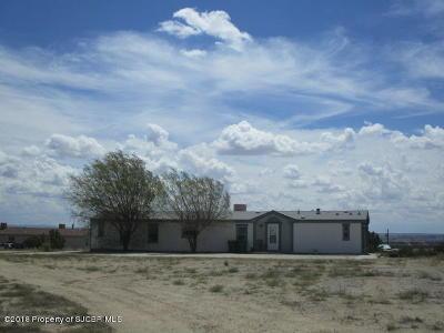 Aztec, Flora Vista Manufactured Home For Sale: 46 Road 3143