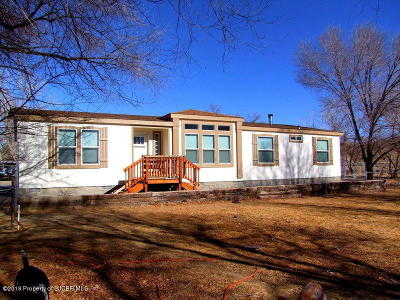 Bloomfield Manufactured Home For Sale: 94a Road 4903