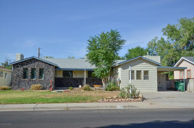 Farmington, Aztec, Bloomfield Single Family Home For Sale: 1205 N Mesa Verde Avenue
