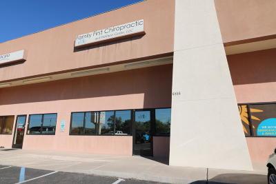 Farmington Commercial For Sale: 6586 E Main Street