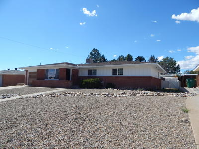Single Family Home For Sale: 2109 Summit Drive