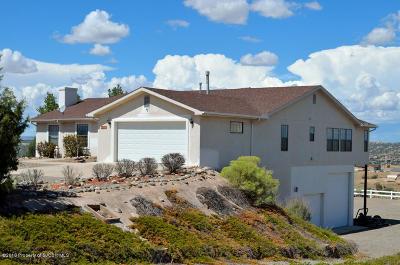 Farmington Single Family Home For Sale: 6 Road 3787