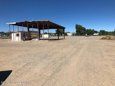 Flora Vista NM Residential Lots & Land For Sale: $801,526
