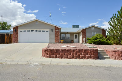 San Juan County Single Family Home For Sale: 1305 Plum Tree Circle